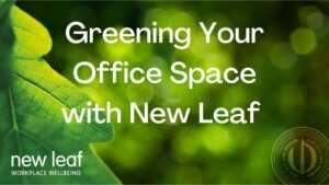 Greening Your Office Space
