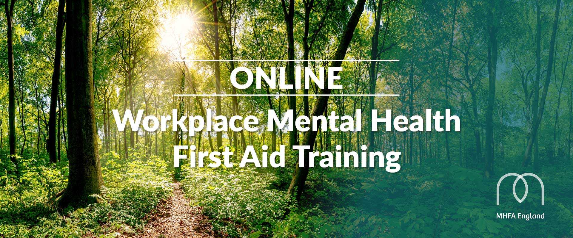 Mental Health First Aid Course Online
