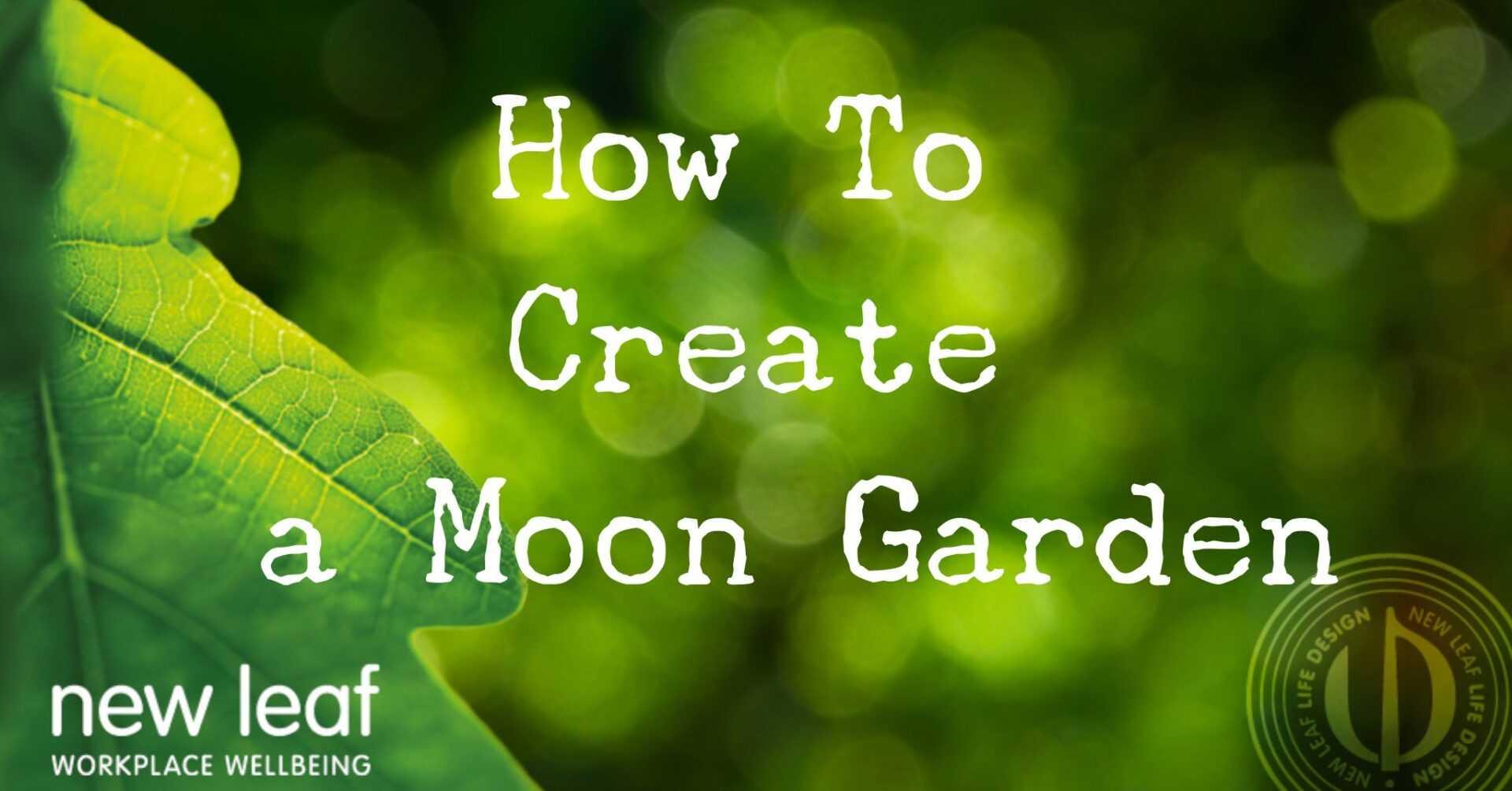 How To Create A Moon Garden