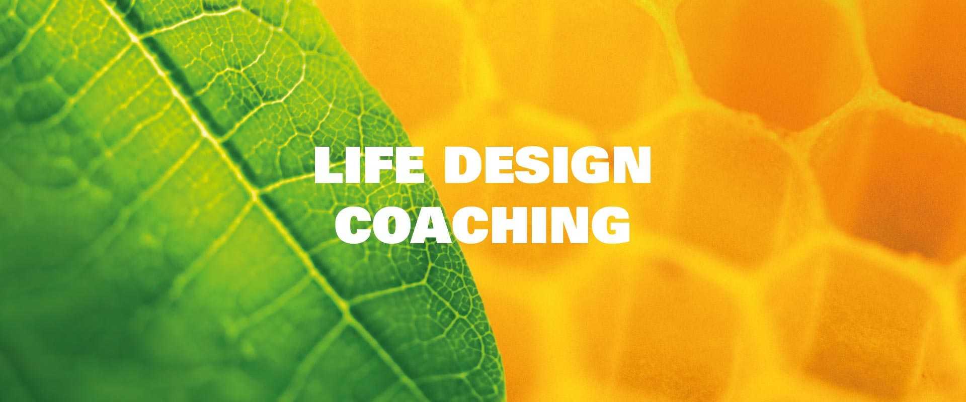 New-Leaf-Life-Design-Banner-v1 (1)