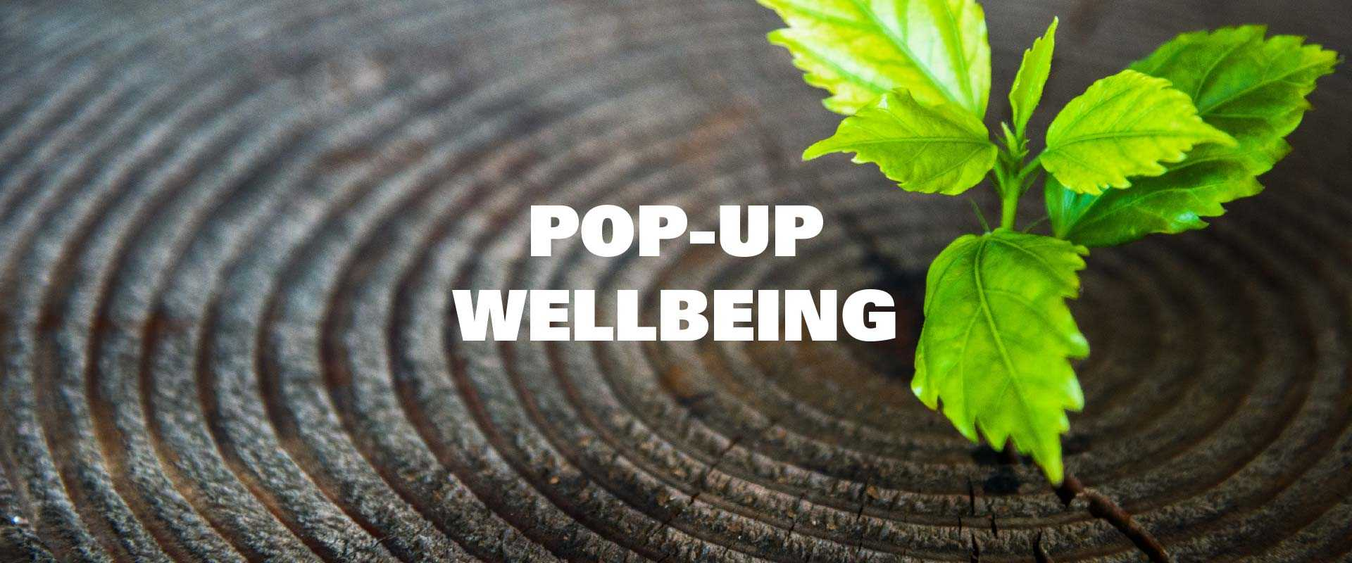 New-Leaf-Pop-Up-Wellbeing-Banner-v1
