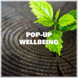 Pop-up wellbeing New Leaf Somerset Becky Wright