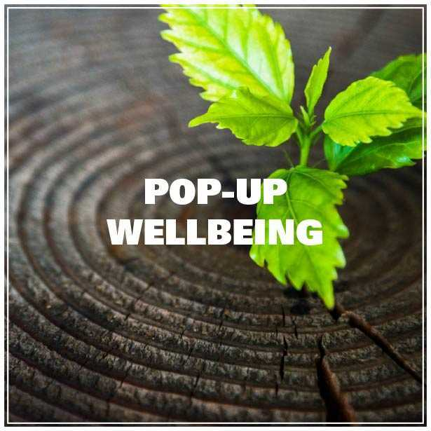 pop- up wellbeing