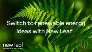 Switch to Renewable Energy