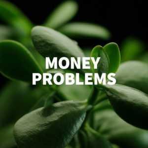 Money Problem Tree